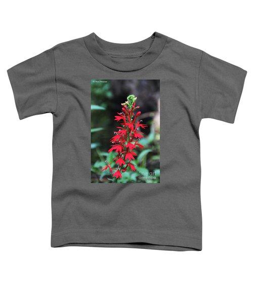 Cardinal Flower Toddler T-Shirt