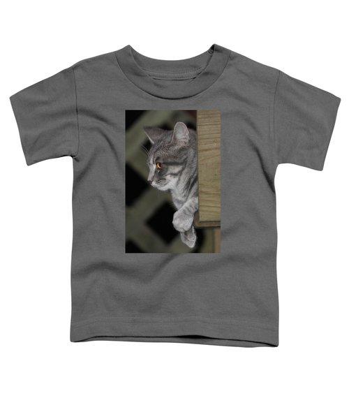 Cat On Steps Toddler T-Shirt