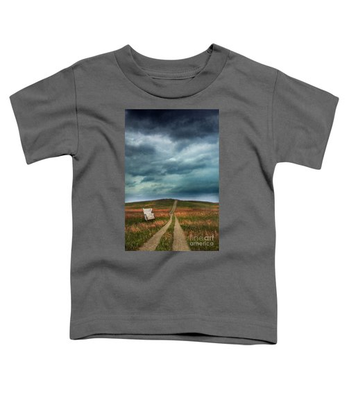 Chair By Country Road Toddler T-Shirt