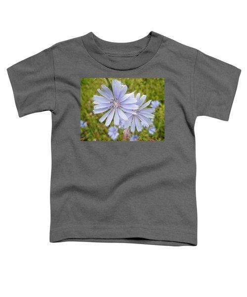 Chicory Wildflower - Cichorium Intybus L.  Toddler T-Shirt