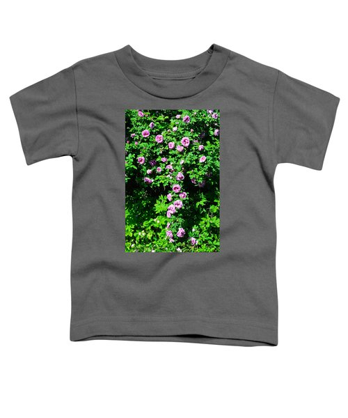 China Rose Toddler T-Shirt
