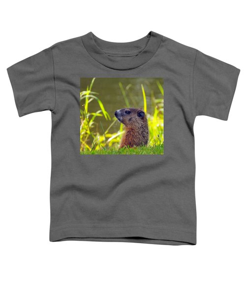 Chucky Woodchuck Toddler T-Shirt
