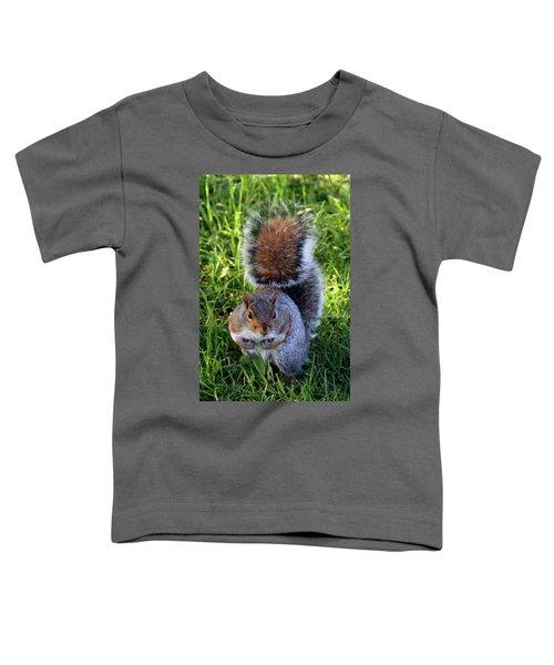 City Squirrel Toddler T-Shirt