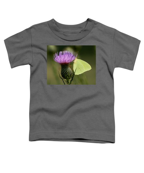 Cloudless Sulfur Butterfly On Bull Thistle Wildflower Toddler T-Shirt