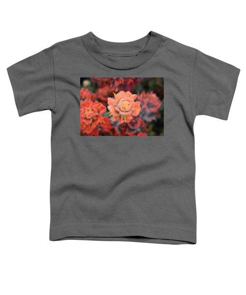 Coastline Color Toddler T-Shirt