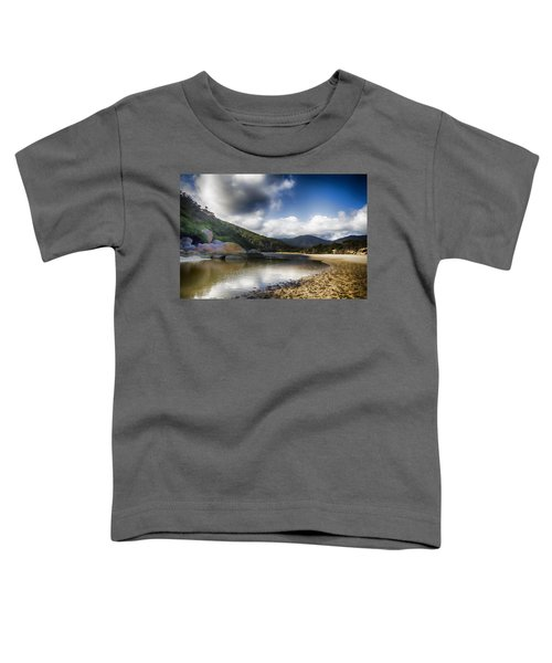 Color Of The Rocks V3 Toddler T-Shirt