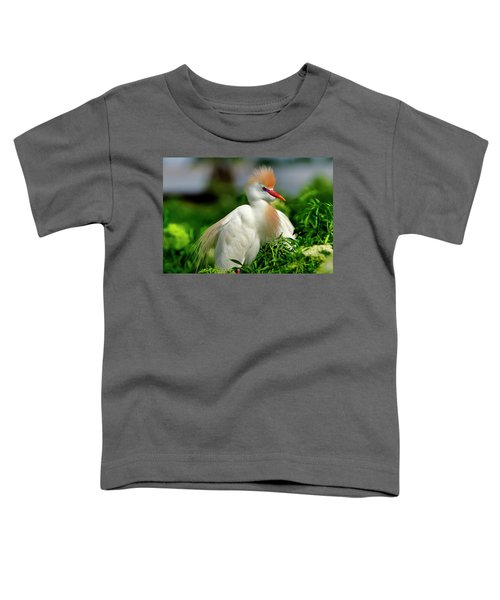 Colorful Cattle Egret Toddler T-Shirt
