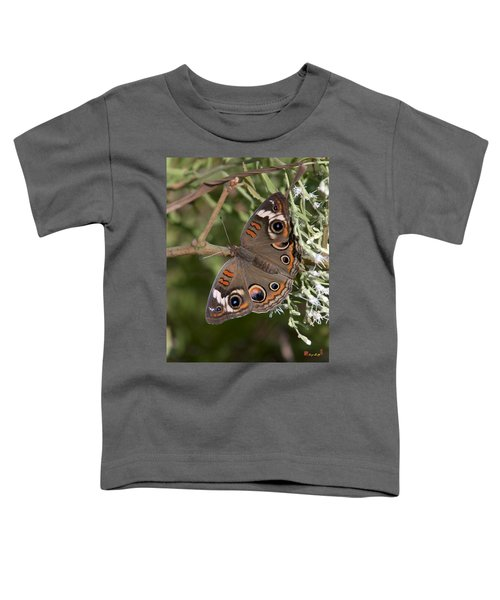 Common Buckeye Butterfly Din182 Toddler T-Shirt