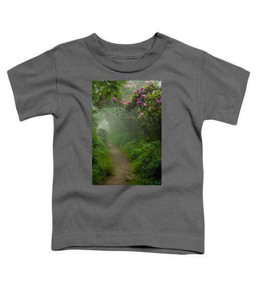 Craggy Path 2 Toddler T-Shirt