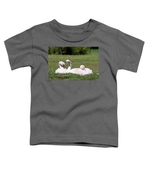 Cygnets Toddler T-Shirt