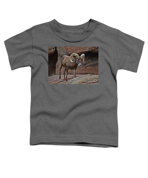 Desert Bighorn Sheep Ram I Toddler T-Shirt