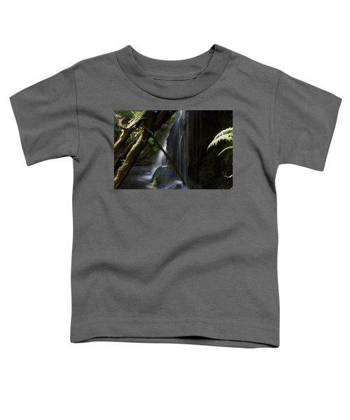 Eden On Orcas Toddler T-Shirt