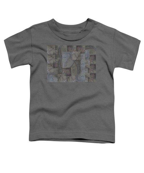Facade 3 Toddler T-Shirt