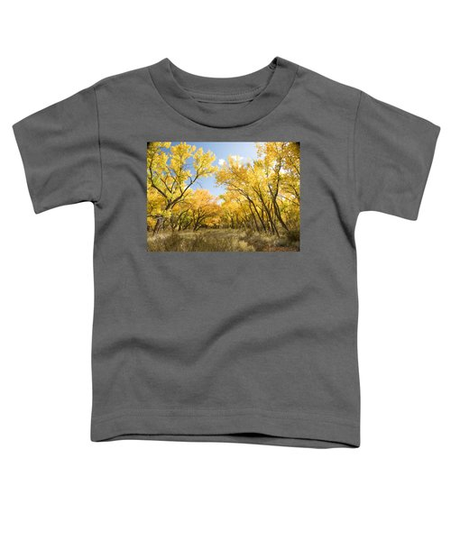 Fall Leaves In New Mexico Toddler T-Shirt
