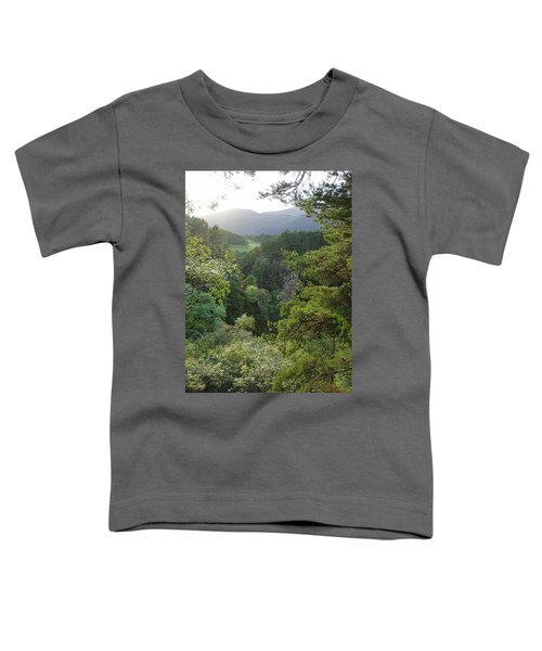 Foyers Valley Toddler T-Shirt