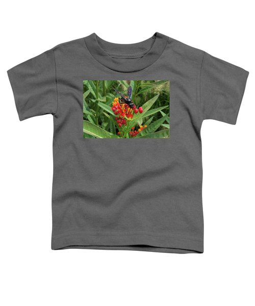 Giant Wasp Toddler T-Shirt