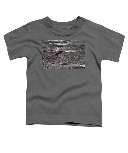 Gracious Ascent Toddler T-Shirt by Douglas Barnard