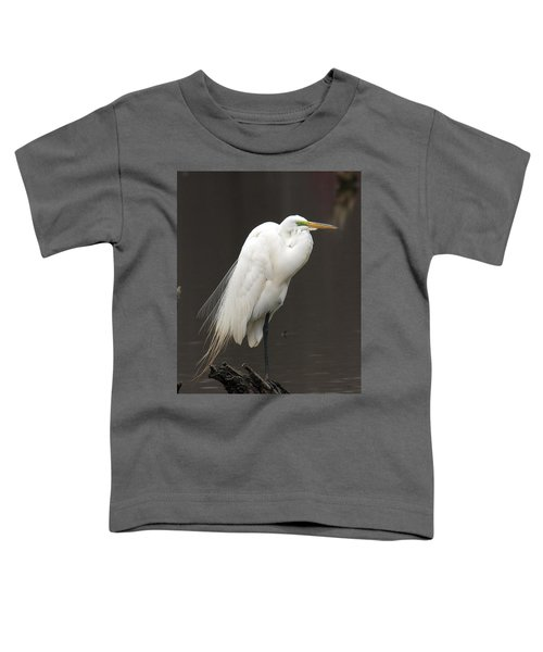Great Egret Resting Dmsb0036 Toddler T-Shirt