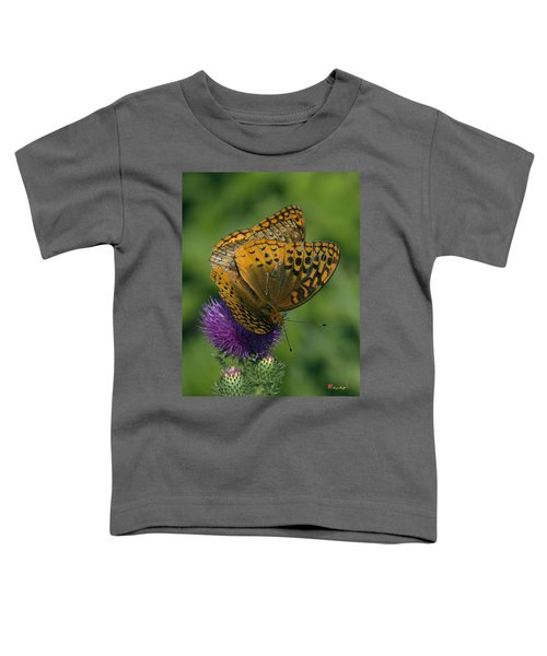 Great Spangled Fritillaries On Thistle Din108 Toddler T-Shirt
