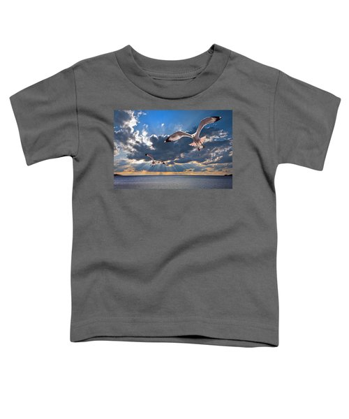 Greek Gulls With Sunbeams Toddler T-Shirt