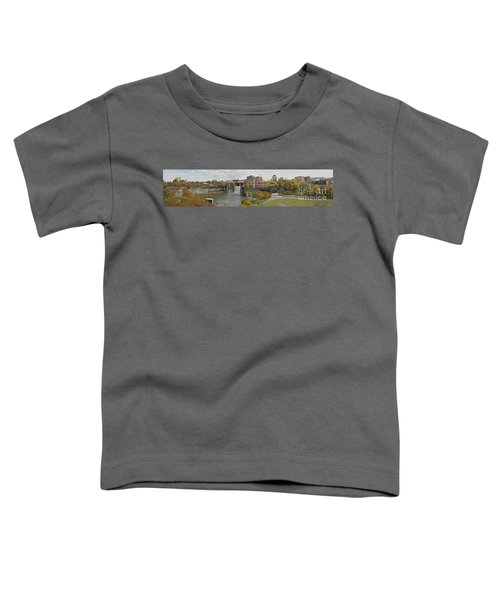 High Falls Panorama Toddler T-Shirt