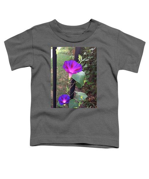 Holland Gate Toddler T-Shirt