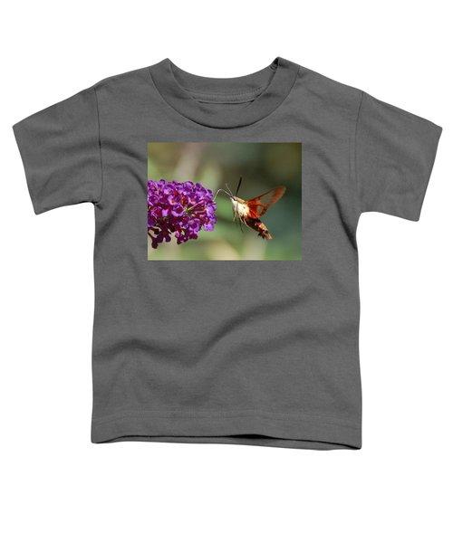 Hummingbird Moth Toddler T-Shirt