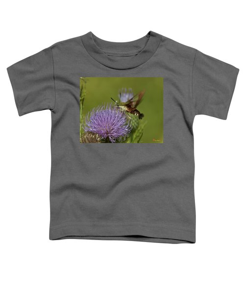 Hummingbird Or Clearwing Moth Din178 Toddler T-Shirt