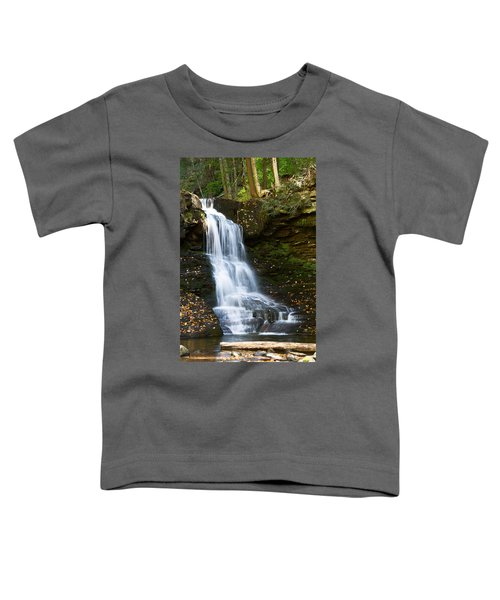 Is It Cottonwood Toddler T-Shirt