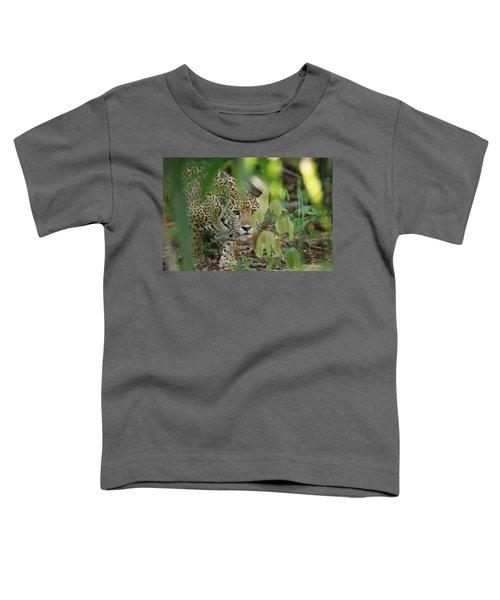 Jaguar Panthera Onca Slinking Toddler T-Shirt