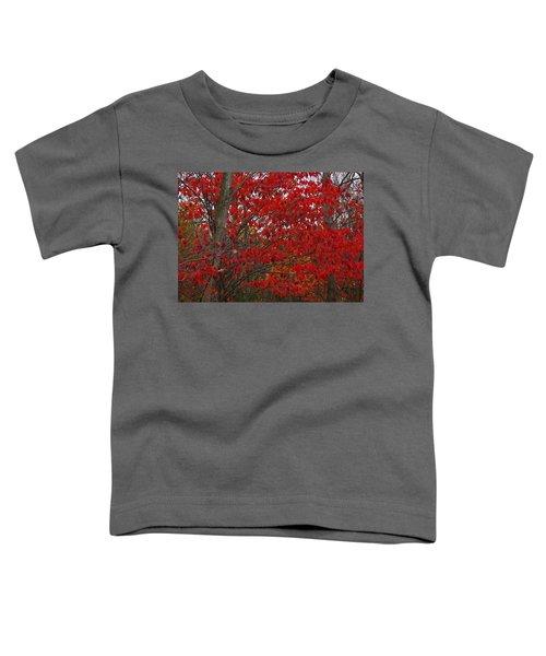 Last Gasp Toddler T-Shirt