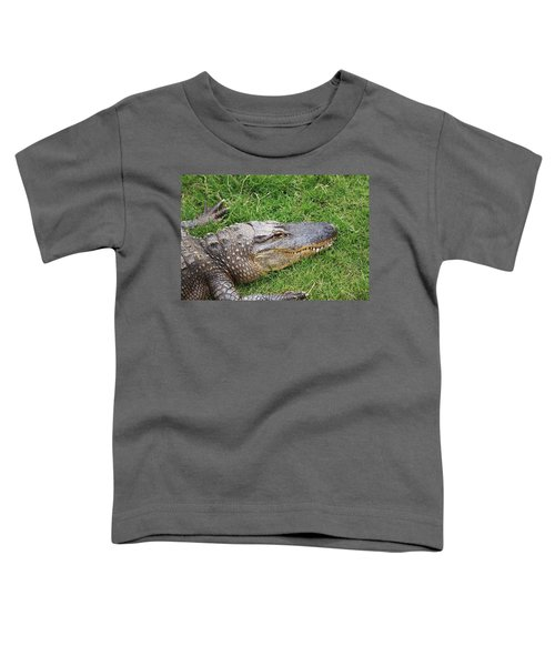 Lazy Gator Toddler T-Shirt