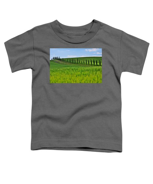 Lined Up Toddler T-Shirt