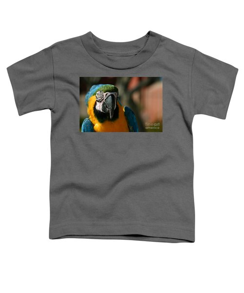 Macaw Toddler T-Shirt