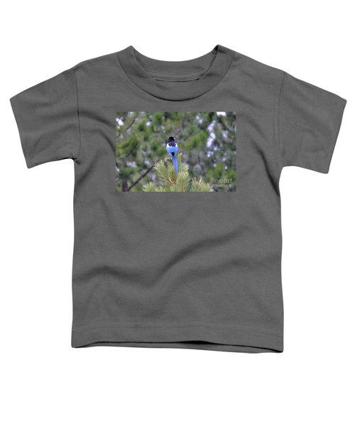 Magpie In Snow Toddler T-Shirt