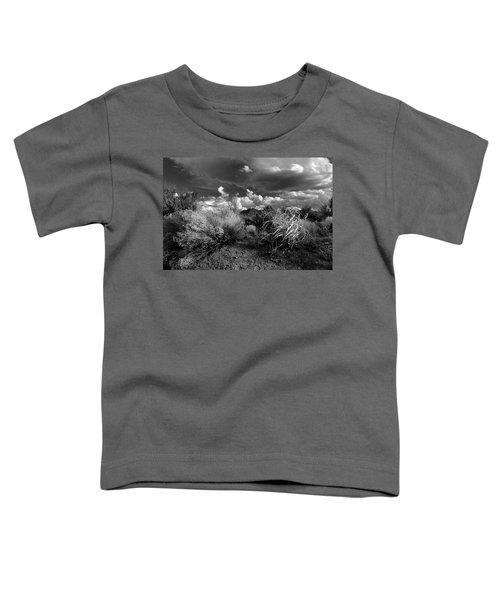 Mesa Dreams Toddler T-Shirt