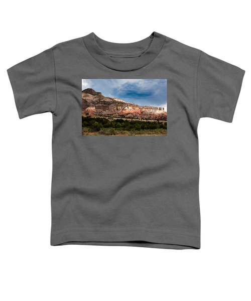 Nature's Paintbrush Toddler T-Shirt