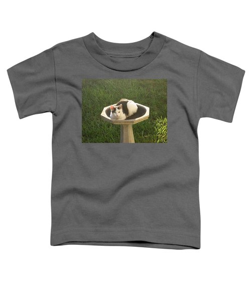 Occupied Bird Bath Toddler T-Shirt