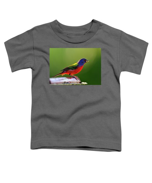 Painting Color Toddler T-Shirt