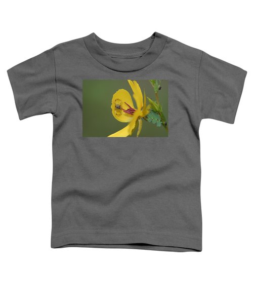 Partridge Pea And Matching Crab Spider With Prey Toddler T-Shirt