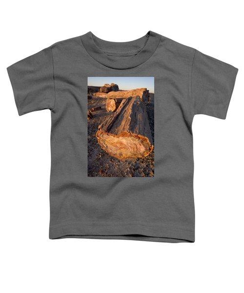 Petrified Forest Toddler T-Shirt
