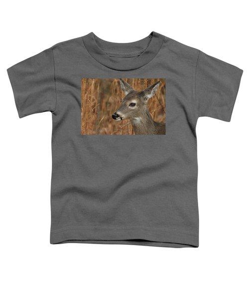 Portrait Of  Browsing Deer Toddler T-Shirt
