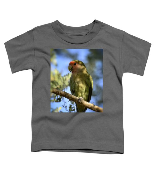 Pretty Bird Toddler T-Shirt by Saija  Lehtonen