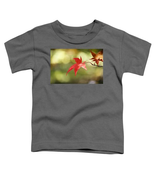 Red Leaf. Toddler T-Shirt by Clare Bambers