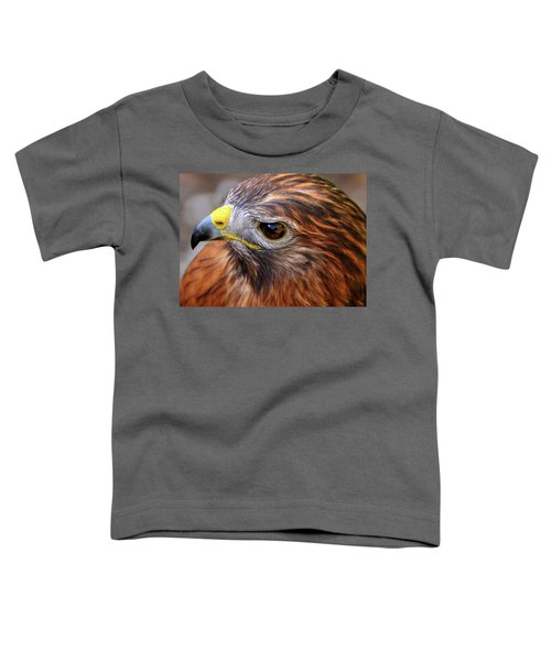Red-tailed Hawk Close Up Toddler T-Shirt