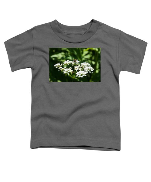 Refractions Toddler T-Shirt