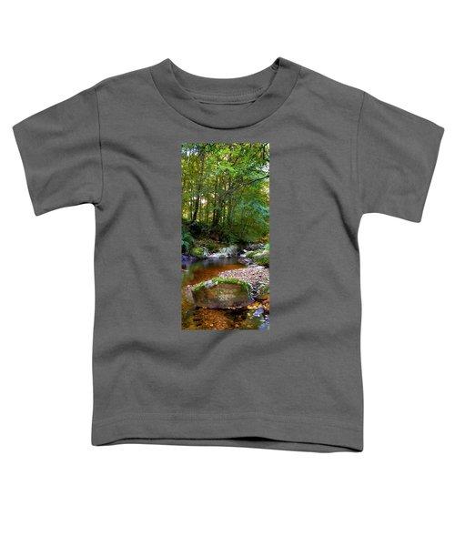 River In Cawdor Big Wood Toddler T-Shirt