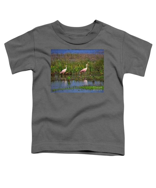 Roseate Spoonbills Toddler T-Shirt by Louise Heusinkveld