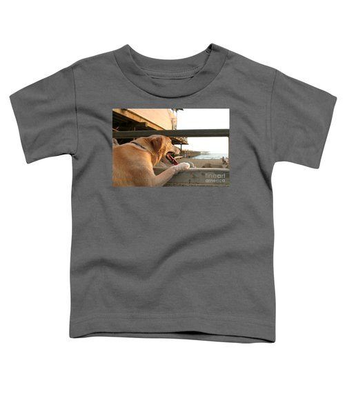 Searching The Ocean Toddler T-Shirt