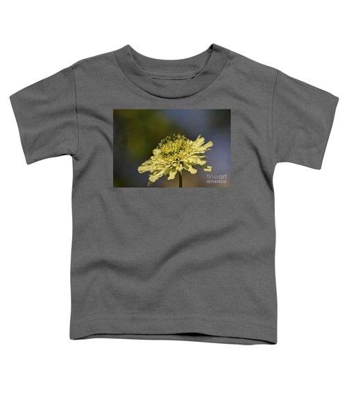 Soft Yellow. Toddler T-Shirt by Clare Bambers